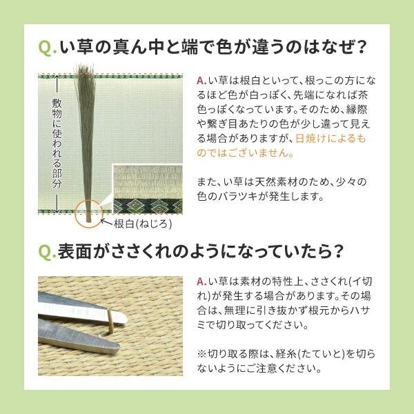 い草 上敷き 6畳 【ビギナー向け2柄】 約261×352cm 【江戸間6畳】  (エルモード)