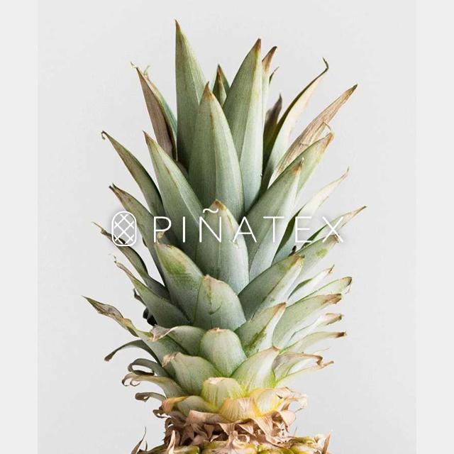 パイナップルから作られた名刺入れ サステナブル sdgs ピニャテックス