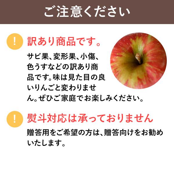 【販売は終了しました】りんご シナノゴールド  訳あり・家庭向け5kg 送料込(沖縄別途1,060円) ※10月中旬以降、順次発送。天候や収穫状況により遅れる場合があります