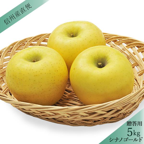 【販売は終了しました】りんご シナノゴールド 秀 贈答用5kg(13〜20玉) 送料込(沖縄別途1,060円) ※10月中旬以降、順次発送。天候や収穫状況により遅れる場合があります