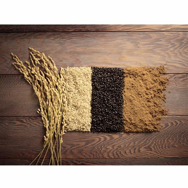 【有機JAS認定】オーガニック焙煎玄米パウダー100g x 2パックセット 香りひきたつ炭窯ロースト 送料込 (沖縄別途240円)