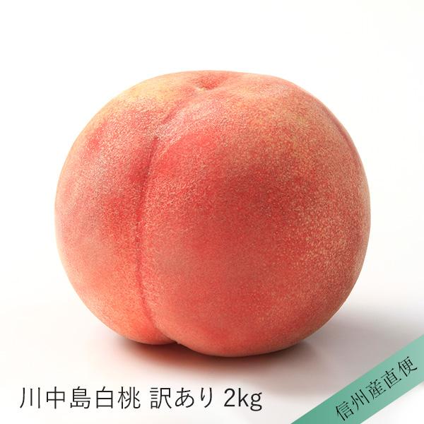 【信州産直便】川中島白桃 2kg 5〜10玉入り 訳あり 送料込