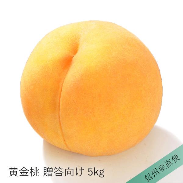 【信州産直便】 桃 もも 黄金桃 贈答向け 5kg 12〜20玉入り 送料込 沖縄県・離島地域配送不可