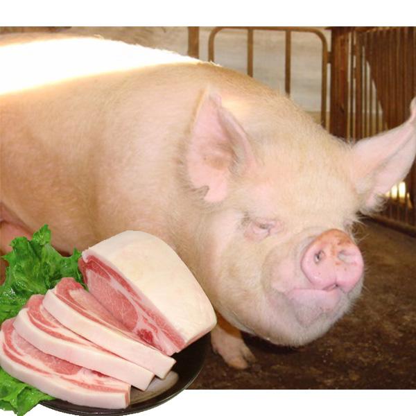 信州産はちみつを与えた銘柄豚しゃぶしゃぶセット 送料込(沖縄別途240円)