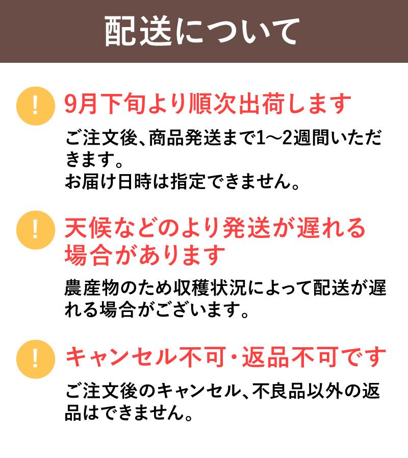 【信州産直便】シャインマスカットスパークリング 720ml&シャインマスカット(2房) 送料無料 (沖縄県・離島地域配送不可)※20歳未満の飲酒・販売は法律で禁止されています