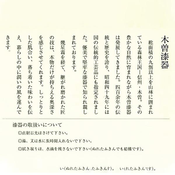 スープカップセット スプーン付 送料込(沖縄別途240円)