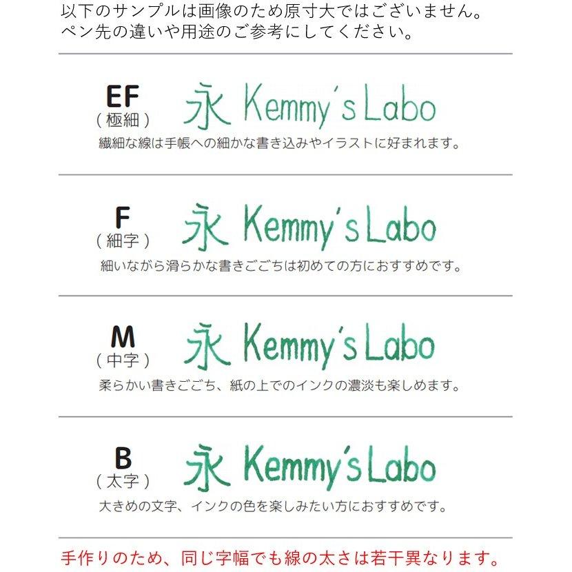 ケミーズラボ ガラスペン 日本製 極細/細字/中字/太字 ペタル(透明) Kemmy's Labo/イヌヅカ硝子工房
