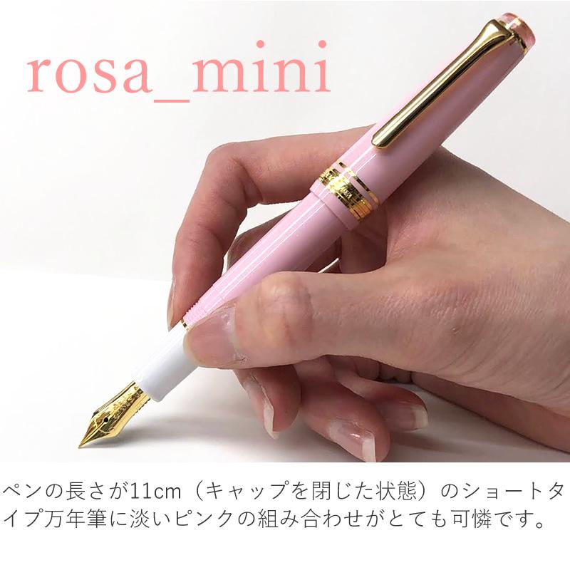 限定 オリジナル万年筆 rosa mini(ローザ ミニ) プロフェッショナルギア スリムミニモデル