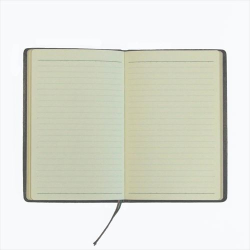 NAGASAWA 能率手帳GOLD メモランダム(MEMORANDUM)
