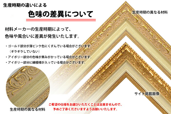 デッサン額縁 8200/ホワイトゴールド 三三サイズ(606×455mm)