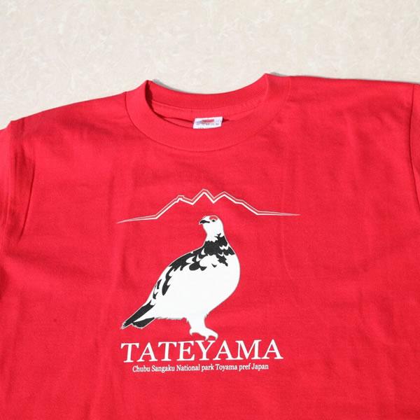 【子供用】立山黒部アルペンルートでしか買えない限定オリジナル雷鳥Tシャツ