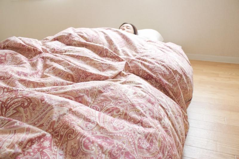【眠10】【超増量1.5kg】羽毛ふとんSL 【A色】 150×210cm 北米ダック90% 生地 綿100% 日本製 木村綿業