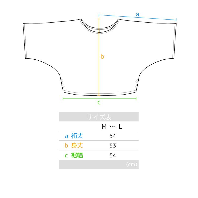 ドルマンスリーブTシャツ ブラック [DT-001]