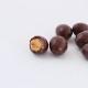 チョコ大豆600g メール便発送 南風堂 九州産大豆フクユタカのローストにミルクチョコレートをコーティング