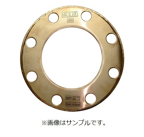 NAPI 600シリーズ JIS 10K-125A 2t F.F