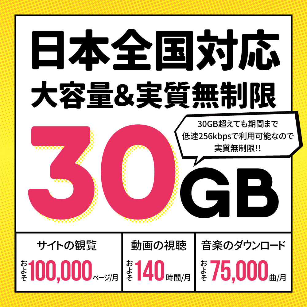 CALENDAR SIMカード 180日30GBプラン[Iプラン] 長期格安プラン
