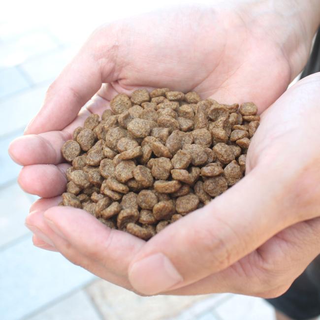 ネイティブドッグ プレミアムフィッシュ 低アレルゲン 3kg  送料無料/一部地域は送料別