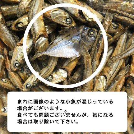【国産】名門ブリーダーの理想的なオヤツ お魚ジャーキー★ にぼし