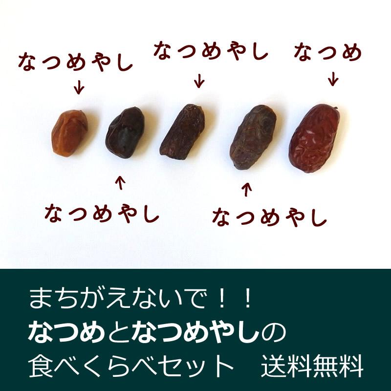 【送料無料・同梱可能】まちがえないで!!なつめとなつめやしの食べくらべセット