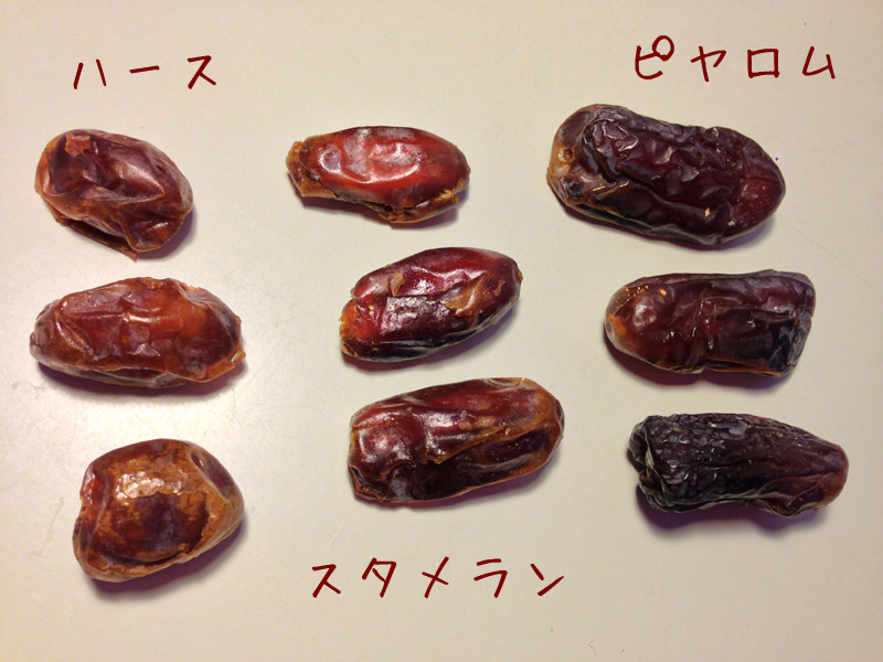 ピヤロム☆ドライデーツ(なつめやし)種あり 500g×2(無農薬)
