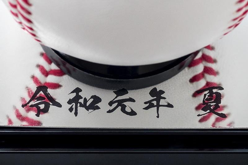 【第101回】大会記念球