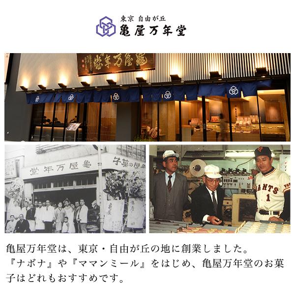 ナボナ 18個入【亀屋万年堂の代表菓子】