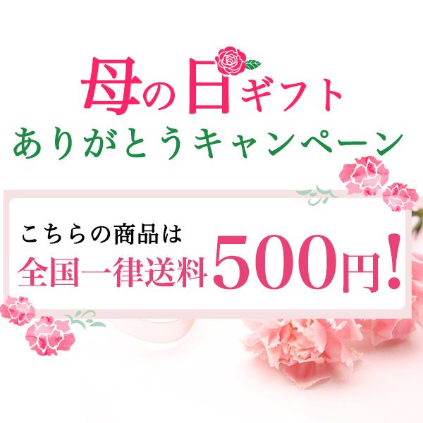 【期間限定 送料500円!】ナボナ 24個入