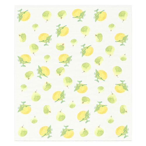 絵便りふきん 柑橘