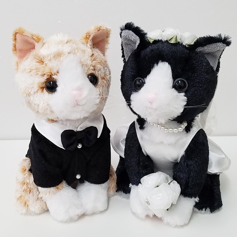 結婚式の受付や結婚祝いに|ウェルカムドール プレミアムウェディング チャトラ 新郎