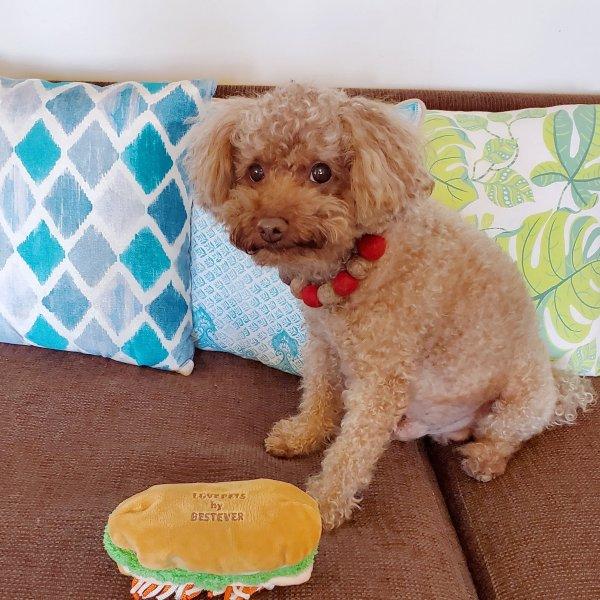 犬のおもちゃ|スクィーキーバインミー