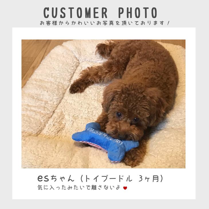 【送料無料 5点セット 】犬 おもちゃ 犬用のおもちゃ | 自分で選べる!犬用おもちゃのお試しセット