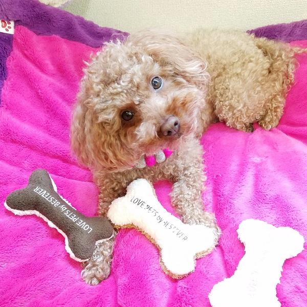 かわいい犬のおもちゃ スクィーキー ホネ M フワフワブラウン