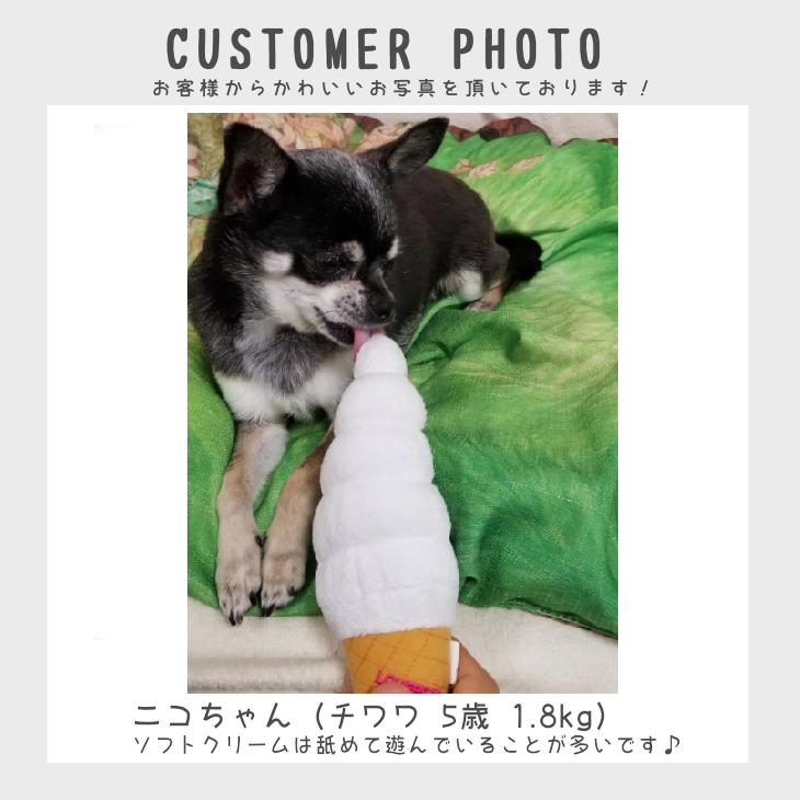 【送料無料 3点セット 】犬 おもちゃ 犬用のおもちゃ   自分で選べる!犬用おもちゃのお試しセット