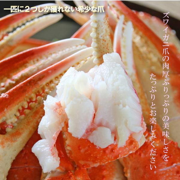 ズワイガニ 大きめ爪 1kg ボイル ずわい蟹 蟹爪 ズワイガニ ボイル済み