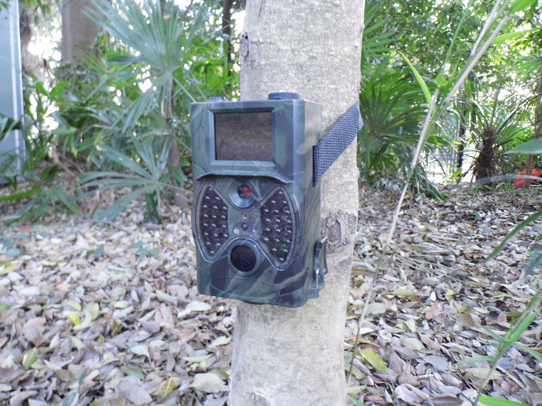 防水設計 屋外 夜間 トレイルカメラ STR300