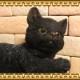 猫の置物 ごろごろベビーキャット ブラック くろねこオブジェ レジン製 ネコフィギュア インテリア ガーデニング素材