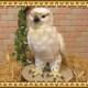 大きくてリアルな鳥のぬいぐるみ ハヤブサ はやぶさオブジェ インテリア とりの置物 トリ バード 縁起物