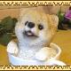 リアルな犬の置物 ポメラニアン ティーカップドッグ Aタイプ◇お部屋のインテリアにお庭のオーナメントとしても♪  子いぬのフィギア ガーデニング オブジェ 玄関先