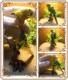 鳥の置物 インコ 小物入れ グリーン とり トリ バード ジュエリーケース 宝石箱 トリケンボックス インテリア