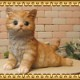 猫の置物 キャット 休憩中! チャトラ ガーデン オーナメント 装飾 ベランダアート ネコオブジェ ねこ フィギュア ガーデニング 玄関先