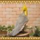 リアルな鳥のぬいぐるみ オカメインコ グレー トリの置物 バードオブジェ インテリア フィギュア