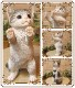 リアルなネコの置物 お願いキャット 2 ホワイト&グレー ねこのフィギュア 猫オブジェ◇お部屋のインテリアにお庭のオーナメントとしても♪