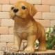 リアルな犬の置物 ラブラドールレトリバー スタンド スモール◇お部屋のインテリアにお庭のオーナメントとしても♪  子いぬのフィギア ガーデニング オブジェ 玄関先