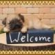 犬の置物 パグ 子いぬ ウエルカムブック 犬雑貨 イヌ いぬ ドッグ オブジェ フィギュア ガーデン ベランダアート ガーデニング 玄関先
