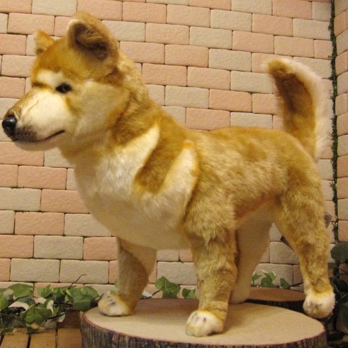 大きくてリアルな柴犬のぬいぐるみ 柴 ビッグサイズ ドッグオブジェ いぬの置物 シバイヌのフィギュア インテリア しばけん
