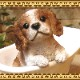 ◇お部屋のインテリアにお庭のオーナメントとしても♪ リアルな犬の置物 バスタブ ドッグ キャバリア イヌのフィギュア いぬのオブジェ キャバリア・キング・チャールズ・スパニエル