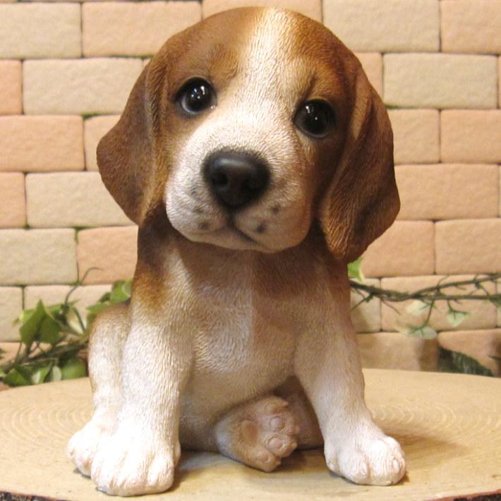 ◇お部屋のインテリアにお庭のオーナメントとしても♪ リアルな犬の置物 ビーグル 子犬  お座り
