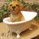 リアルな犬の置物 バスタブ ドッグ ラブラドールレトリバー イヌのフィギュア いぬのオブジェ ◇お部屋のインテリアにお庭のオーナメントとしても♪