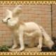 大きくてリアルな動物のぬいぐるみ フェネック ホワイト ビッグサイズ アニマルオブジェ きつねグッズ キツネの置物 インテリア