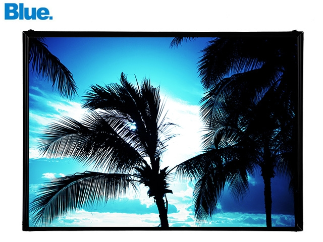 Blue.オリジナル Photo&Frame 「Palm Tree 2」 Lサイズ